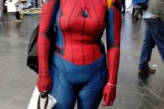 Comic-Con-2018-12-01-IMG_20181201_163922-1000